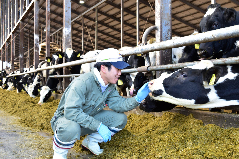 乳牛と会話する竹田さん