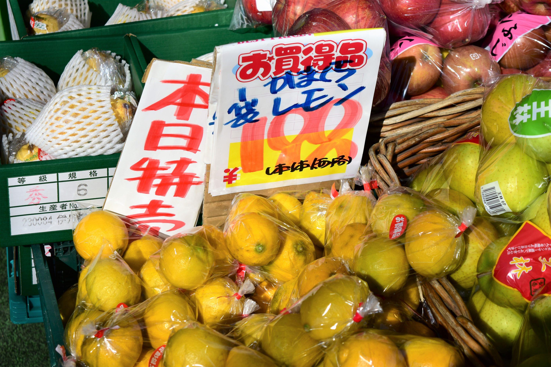 鎌倉産レモン