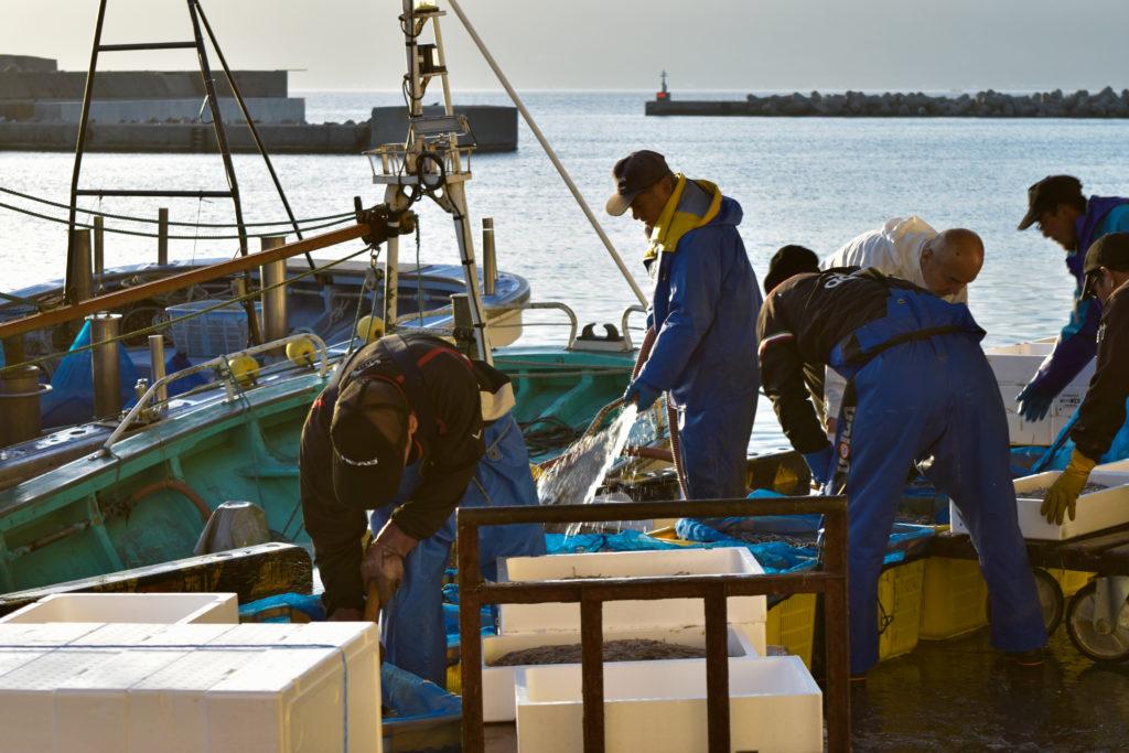 寿都漁港の漁師さん